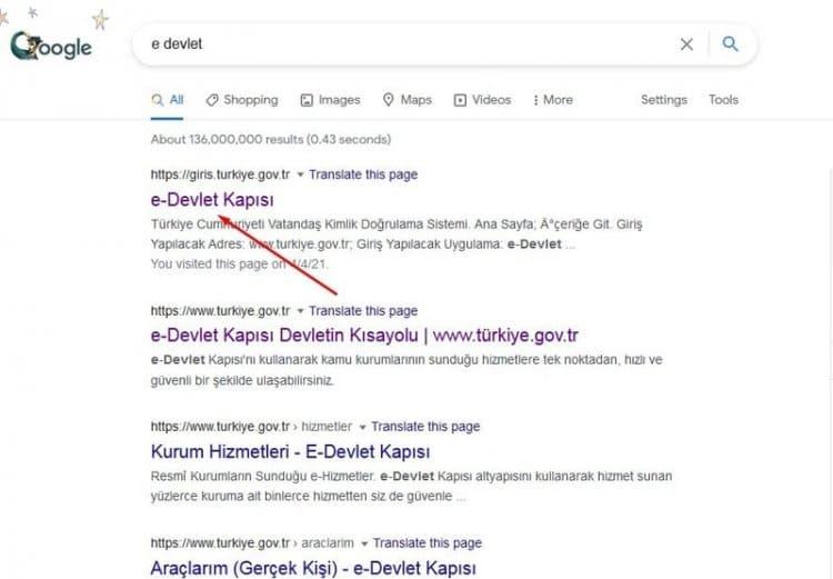 google e-devlet