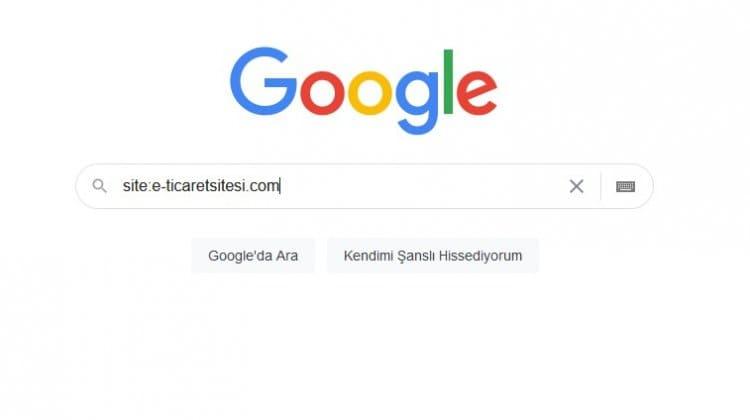 Sitem Google da var mı