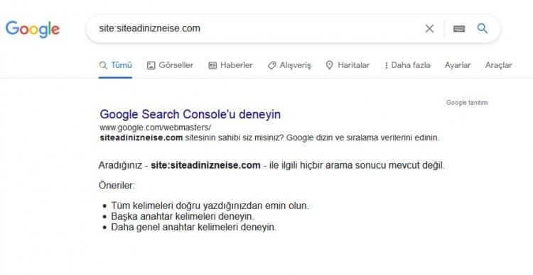 Web siteniz Google da yok