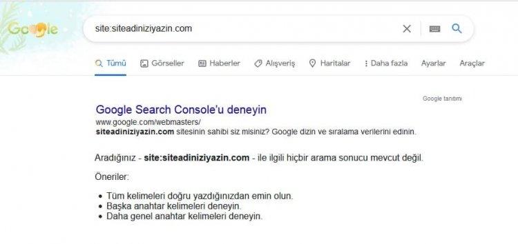 google site kontrol
